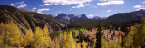 Aspen Trees with Mountains in the Background, Colorado, USA Photographic Print