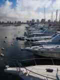 Boats at a Harbor, Punta Del Este, Maldonado, Uruguay Photographic Print