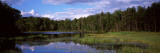 Trees Around a Pond, Big Moose Lake, Adirondack Mountains, New York State, USA Photographic Print