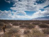 Clouds Over a Desert, Los Cardones National Park, Cachi, Salta Province, Argentina Photographic Print