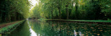 Reflection of Trees in a Canal, Rhone-Rhine Canal, Alsace, France Photographic Print