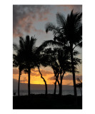 Sunset Silhouette in Maui Photographic Print by Chris Burns
