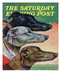 """Greyhounds,"" Saturday Evening Post Cover, March 29, 1941 Reproduction procédé giclée par Paul Bransom"