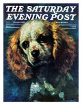 """Cocker Spaniel,"" Saturday Evening Post Cover, March 1, 1975 Giclee Print by L. Mayer"