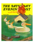 """Ducks in a Flood,"" Saturday Evening Post Cover, April 5, 1941 Giclee Print by McCauley Conner"