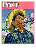 """Apple Blossoms,"" Saturday Evening Post Cover, May 6, 1944 Giclee Print by Howard Scott"