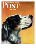 """Gordon Setter,"" Saturday Evening Post Cover, October 17, 1942 Giclee Print by W.W. Calvert"
