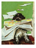 """Butch and the Sunday Paper,"" May 31, 1947 Giclee Print by Albert Staehle"