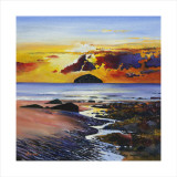 Ailsa Craig Collectable Print by Davy Brown
