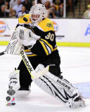 Boston Bruins - Tim Thomas Photo