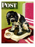 """Butch Weighs In,"" Saturday Evening Post Cover, September 1, 1945 Reproduction procédé giclée par Albert Staehle"