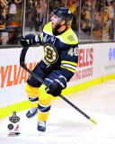 Boston Bruins - David Krejci Celebration Photo