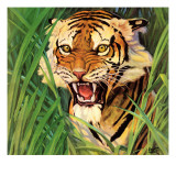 """Snarling Tiger,"" April 19, 1941 Giclee Print by Emmett Watson"