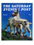 """Two Kid Goats,"" Saturday Evening Post Cover, May 9, 1942 Giclee Print by W.W. Calvert"