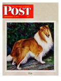 """Collie,"" Saturday Evening Post Cover, September 11, 1943 Giclee Print by Rutherford Boyd"