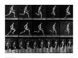 Athlete Running, 1897 Reproduction procédé giclée par Eadweard Muybridge
