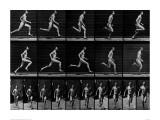 Athlete Running, 1897 Giclée-tryk af Eadweard Muybridge