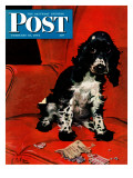 """Butch Ate the Coupons,"" Saturday Evening Post Cover, February 19, 1944 Giclee Print by Albert Staehle"
