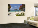 Pohutukawa Tree in Bloom and Hahei, Coromandel Peninsula, North Island, New Zealand Premium Wall Mural by David Wall