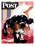 &quot;Butch and the Nylons,&quot; Saturday Evening Post Cover, February 15, 1947 Giclee Print by Albert Staehle