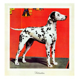 """Dalmatians,"" July 17, 1943 Giclee Print by Rutherford Boyd"