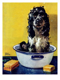 &quot;Butch Gets a Bath,&quot; May 11, 1946 Giclee Print by Albert Staehle