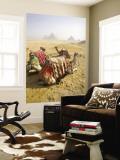 Resting Camels Gaze Across the Desert Sands of Giza, Cairo, Egypt Vægplakat i topklasse af Dave Bartruff
