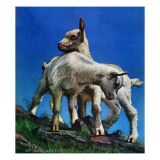 """""""Two Kid Goats,"""" May 9, 1942 Giclee Print by W.W. Calvert"""