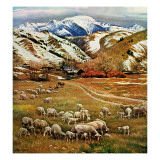 """Sheep Ranch,"" March 18, 1961 Giclee Print by John Clymer"