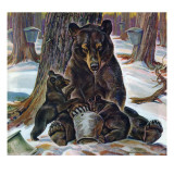 """Bears Eating Maple Syrup,"" March 28, 1942 Giclee Print by Paul Bransom"