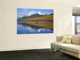 Sea Kayaker on Bowman Lake in Autumn in Glacier National Park, Montana, USA Wall Mural by Chuck Haney