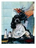 """Butch's Haircut,"" January 31, 1948 Giclee Print by Albert Staehle"
