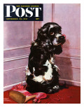 """Bad Dog, Butch,"" Saturday Evening Post Cover, September 20, 1947 Giclee Print by Albert Staehle"