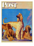 &quot;Afghan Hounds,&quot; Saturday Evening Post Cover, March 18, 1944 Giclee Print by Rutherford Boyd