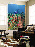 Scuba Diver and Sea Fans, Raja Ampat, Papua Wall Mural by Stuart Westmorland