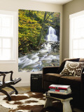 Moss Glen Falls in Autumn, Granvillie, Vermont, USA Wall Mural by Adam Jones