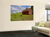 A Ride Through the Farm Country of Palouse, Washington State, USA Wall Mural by Joe Restuccia III