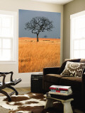 Lone Tree in Grassland Wall Mural by Mark Daffey