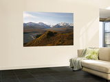 Denali National Park and Preserve, East Fork of Toklat River Across Murie Plain, Alaska, USA Wall Mural by Bernard Friel