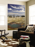 West Thumb Geyser Basin Wall Mural by Shannon Nace