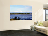 Denali Across the Susitna River at Talkeetna, Alaska, USA Wall Mural by Bernard Friel