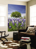 Texas Bluebonnets and Oak Tree, Texas, USA Wall Mural by Julie Eggers