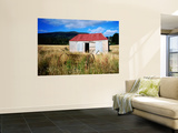 Old Shed and Farm Equipment Near Cloudy Bay Wall Mural by Holger Leue