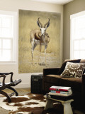 Front View of Standing Springbok, Etosha National Park, Namibia, Africa Wall Mural by Wendy Kaveney