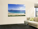 Makapuu Beach, Hawaii, USA Premium Wall Mural by Douglas Peebles