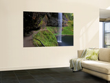 South Falls in Silver Falls State Park, Oregon, USA Wall Mural by Joe Restuccia III