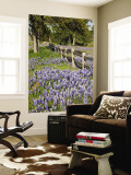 Lone Oak Tree Along Fence Line With Spring Bluebonnets, Texas, USA Premium Wall Mural by Julie Eggers