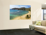 Hanauma Bay Nature Preserve Wall Mural by Ann Cecil