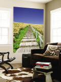 Wooden Walkway Cutting Through Fields of Tall Bamboo Grass Wall Mural by Paul Dymond