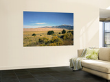 Sand Dunes of Great Sand Dunes National Park and Preserve in the Sangre De Cristo Mountains, CO Wall Mural by Bernard Friel